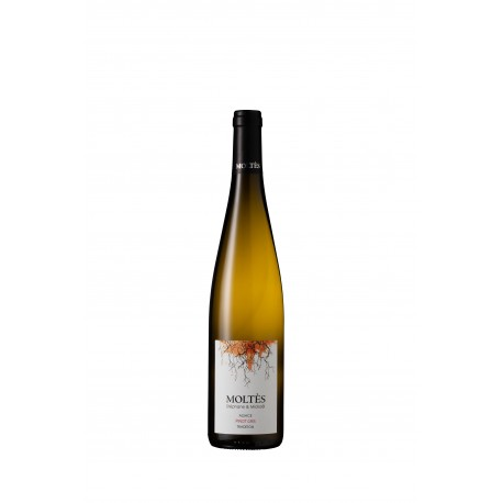 Alsace Tradition Pinot Gris 2017 (offre)
