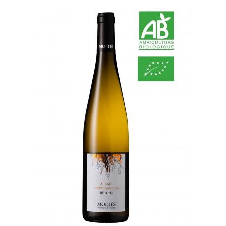 Alsace Terroir Riesling Terre d'Apollon 2018 BIO